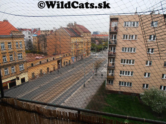 Mačacia sieť na balkóne