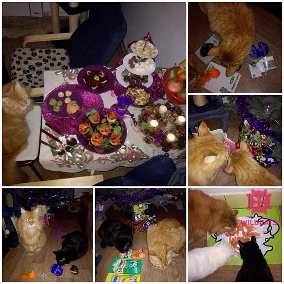sviatočná večera a mačacie hračky