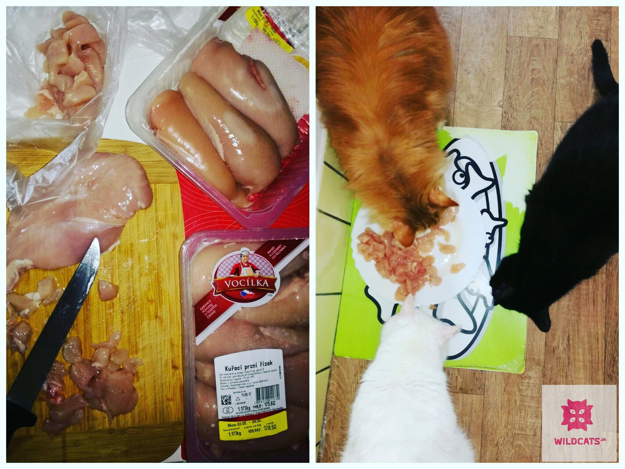 Mäso a vnútornosti vo výžive mačiek