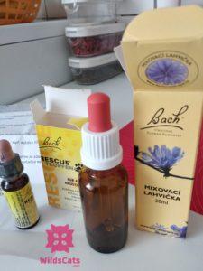 Bachove kvety terapia homeopatia