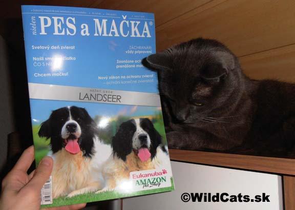 Vyšlo nové číslo časopisu Pes a mačka