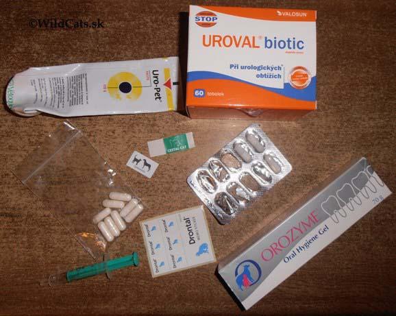 Pliaga menom giardia – endoparazit mačiek (i človeka)