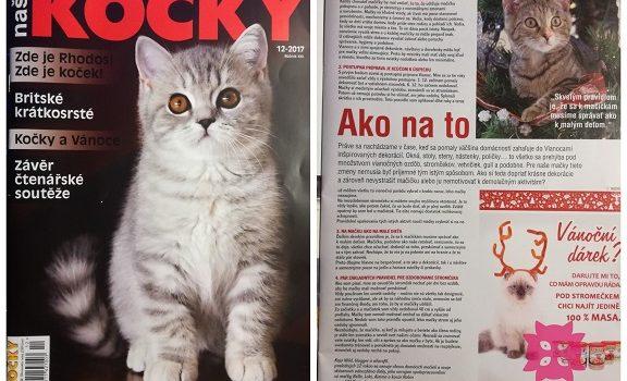WildCats už radí aj českým mačkárom v magazíne Naše kočky