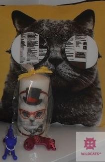 Inšpirácia pre milovníkov mačiek a tetovania