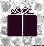 Zaujímavé tipy na (nielen) vianočné darčeky pre mačky