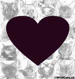 PeTA oslavuje 35rokov a tu je prierez najvýznamnejších momentov v boji za práva zvierat