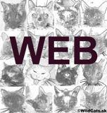Informačný portál wildscats.com oslavuje svoje piate narodeniny
