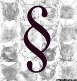 Povinné čipovanie psov, mačiek a fretiek bude zrušené od januára 2014