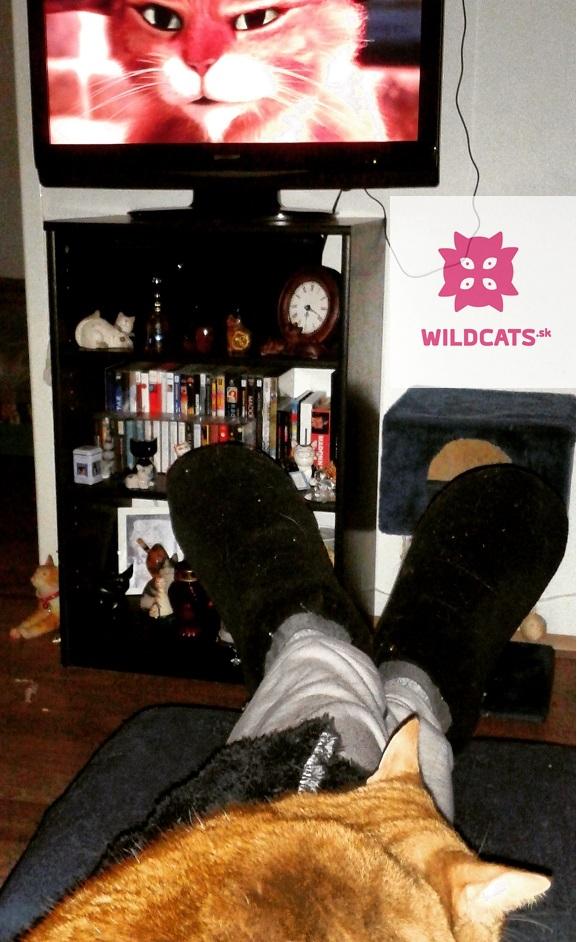 Keanu movie – ďalší film s mačkou v hlavnej úlohe už na DVD