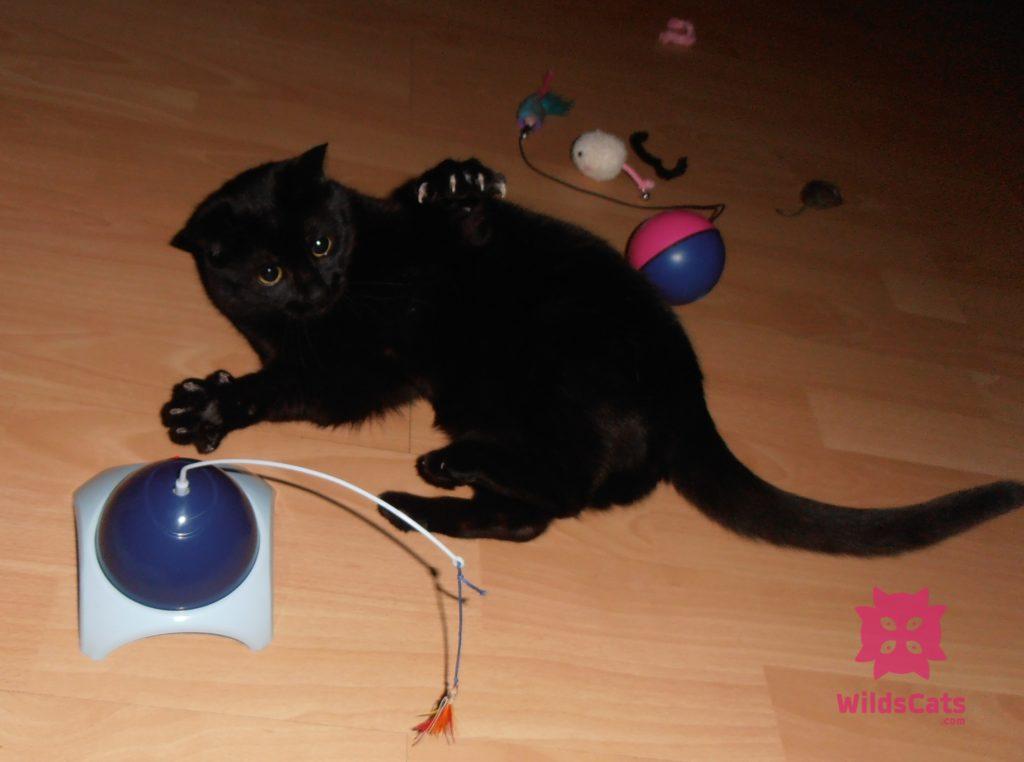 Lola si hraje s mechanickými hračkami